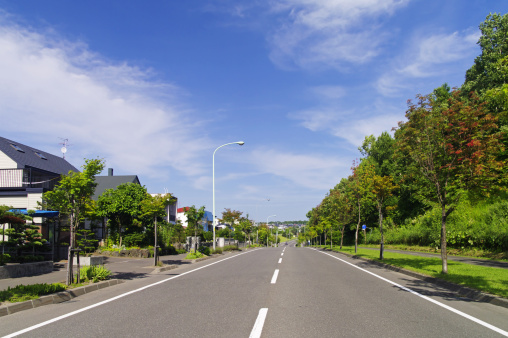 Tree「Road in Residential District」:スマホ壁紙(0)