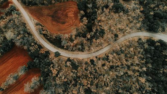 紅葉「Spain, Catalonia, Lleida, Aerial view of road through forest in autumn」:スマホ壁紙(19)
