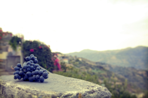 1980-1989「Grapes on an old wall in Sicily, Italy」:スマホ壁紙(1)