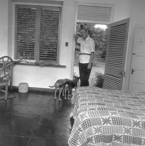 Jamaica「Golden Eye」:写真・画像(18)[壁紙.com]
