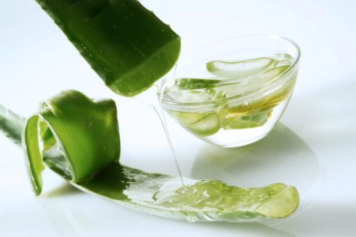 Healing「Gel from Aloe leaf」:スマホ壁紙(9)