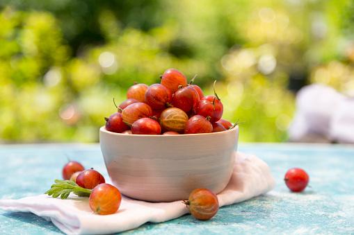 Gooseberry「Bowl of red gooseberries」:スマホ壁紙(15)