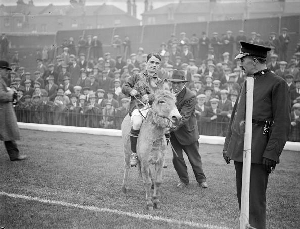 North「Jockey On Donkey」:写真・画像(17)[壁紙.com]