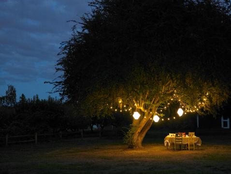 Hanging「Table in yard illuminated by lanterns hanging on tree」:スマホ壁紙(5)