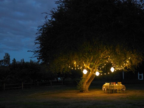 Lantern「Table in yard illuminated by lanterns hanging on tree」:スマホ壁紙(1)