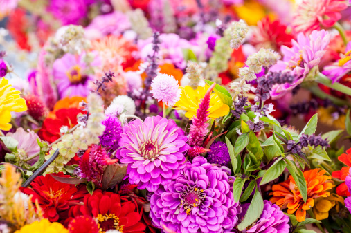 豊富「Fresh cut summer flowers on display at a farmer's market.」:スマホ壁紙(19)