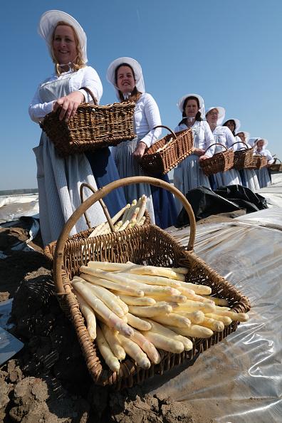 Asparagus「Asparagus Season Underway In Beelitz Region」:写真・画像(18)[壁紙.com]