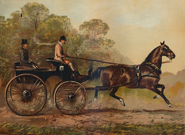 "Dust「Single Harness Phaeton Horse ""Columbine"" Property Of Charles Baynes Esq」:写真・画像(12)[壁紙.com]"