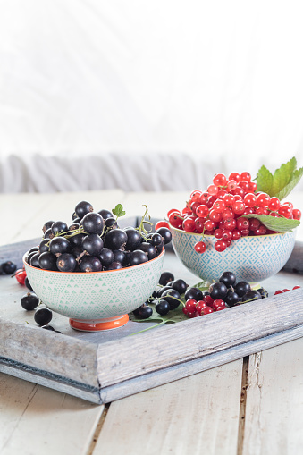 Black currant「Two bowls of red and black currants on a tray」:スマホ壁紙(17)