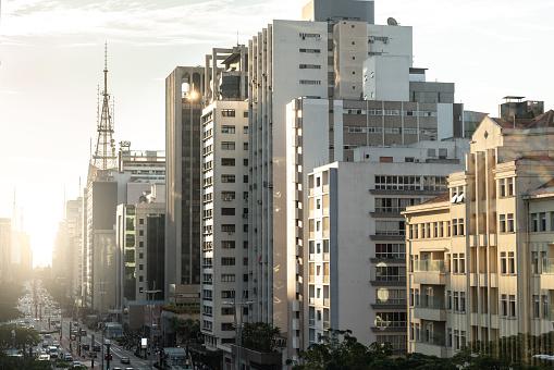 Avenida Paulista「Avenida Paulista, Sao Paulo, Brazil」:スマホ壁紙(6)