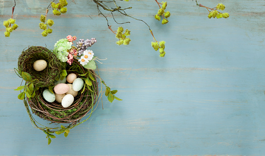 Easter「Easter Bird Nest with Easter Eggs on Rustic Blue Wood Background」:スマホ壁紙(6)
