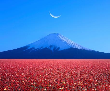 Lake Kawaguchiko「Mount Fuji and moonrise.」:スマホ壁紙(3)