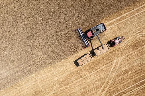 田畑「ハーベスタ収穫フィールド、テューリンゲン州、ドイツの小麦」:スマホ壁紙(6)