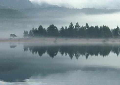 Nikko City「Pond」:スマホ壁紙(4)