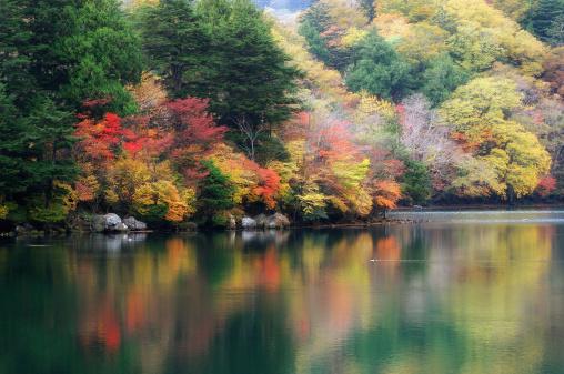 Nikko City「Autumn glow in Nikko」:スマホ壁紙(2)