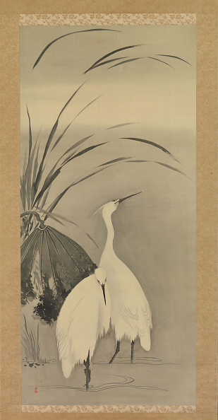 Water Lily「Two Egrets And Lotus」:写真・画像(16)[壁紙.com]