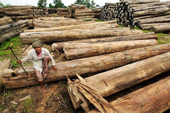 Log「Political Strife Continues In Myanmar」:写真・画像(1)[壁紙.com]
