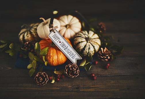 Pine Cone「Pumpkin assortment still life and Happy Thanksgiving message」:スマホ壁紙(19)