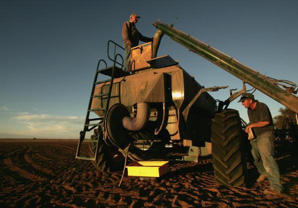 Canola「Victorian Farmers Battle Drought Conditions」:写真・画像(19)[壁紙.com]