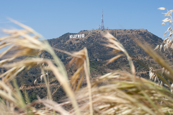 Hollywood Sign「Los Angeles March Heat Wave Shatters Records」:写真・画像(14)[壁紙.com]