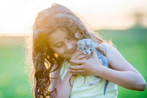 Kitten「新しい Pet」:スマホ壁紙(0)