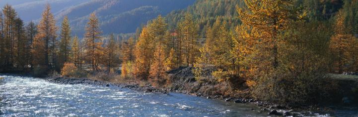 Water's Edge「France, Hautes-Alpes, Queyras, river, autumn」:スマホ壁紙(16)