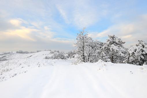 Snowdrift「Winter Hilltop Landscape in Snow with Promising Sky」:スマホ壁紙(19)
