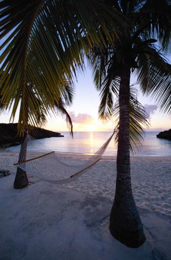Hammock「Hammock and palm trees, Bahamas」:スマホ壁紙(14)