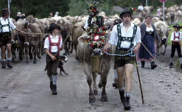 Mountain「Ceremonial Cattle Drive In Bavarian Mountains」:写真・画像(11)[壁紙.com]