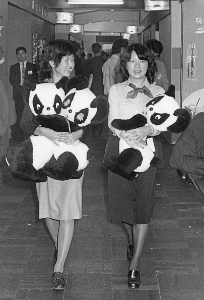 Only Young Women「Panda Diplomacy」:写真・画像(7)[壁紙.com]