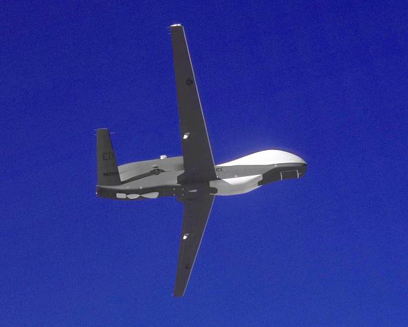 Hawk - Bird「Global Hawk Unmanned Aerial Vehicle」:写真・画像(2)[壁紙.com]