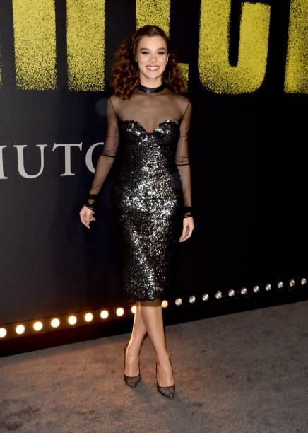 カリフォルニア州ハリウッド「Premiere Of Universal Pictures' 'Pitch Perfect 3' - Arrivals」:写真・画像(13)[壁紙.com]