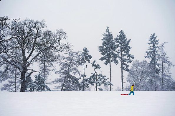 Snow「Heavy Snow Hits The UK」:写真・画像(12)[壁紙.com]