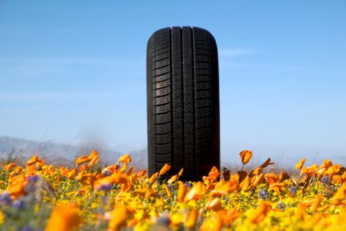 Contrasts「Car tire in Poppy Flower field.」:スマホ壁紙(2)