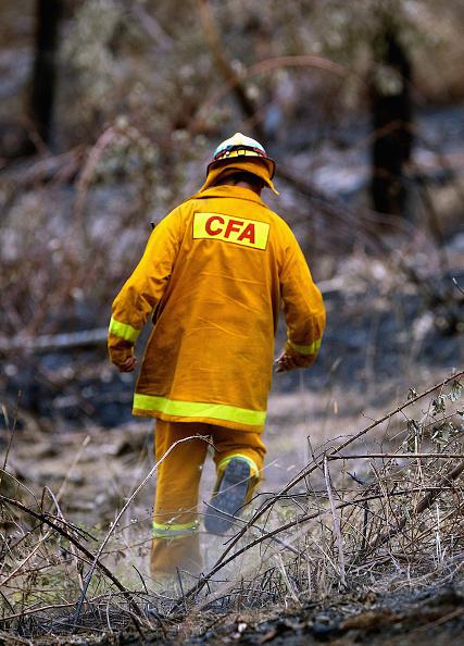 Volunteer「Victoria Braces For Further Bushfires」:写真・画像(18)[壁紙.com]