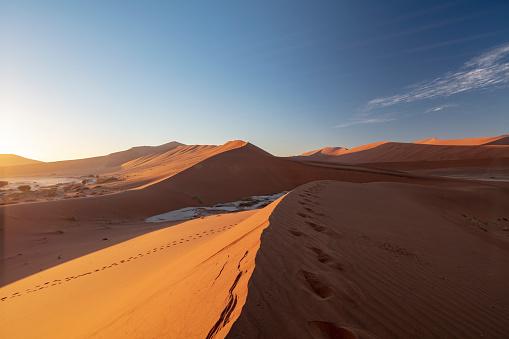 Effort「Sossuvlei sand dunes at sun rise, Namibia, 2018」:スマホ壁紙(15)