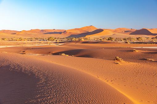 Effort「Sossuvlei sand dunes at sun rise, Namibia, 2018」:スマホ壁紙(12)