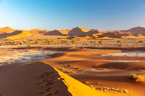Effort「Sossuvlei sand dunes at sun rise, Namibia, 2018」:スマホ壁紙(16)