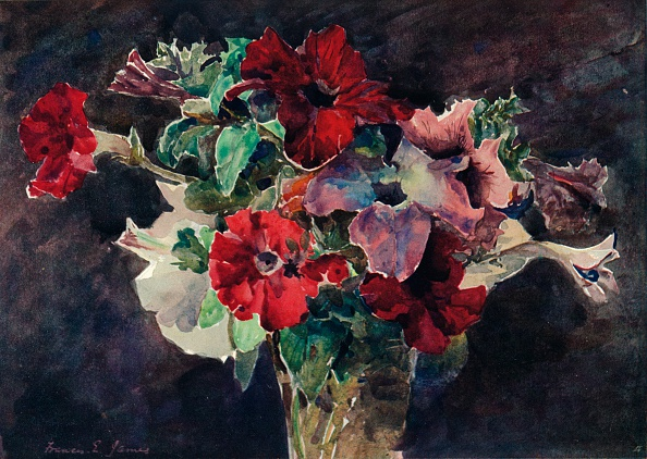 母の日「Petunias, c1869-1906, (1906). Artist: Francis Edward James」:写真・画像(9)[壁紙.com]