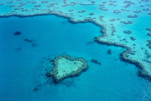 Queensland「Aerial of heart-shaped reef at Hardy Reef, near Whitsunday Islands.」:スマホ壁紙(10)