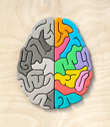 Leisure Games「Brain shaped organic puzzle from above, one half greys the other colourful.」:スマホ壁紙(2)