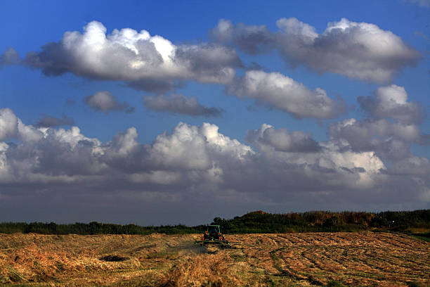 Rising Agricultural Costs Force Food Prices Higher:ニュース(壁紙.com)