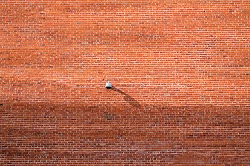 Brick Wall「Surveillance camera on a brick wall」:スマホ壁紙(6)