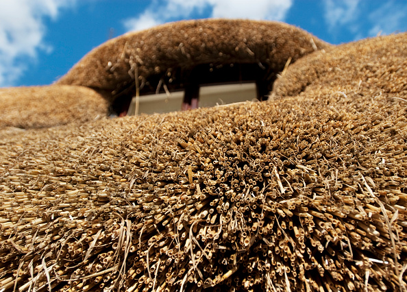 Clear Sky「Close up detail of a cottage thatched roof  Essex  England  UK」:写真・画像(13)[壁紙.com]