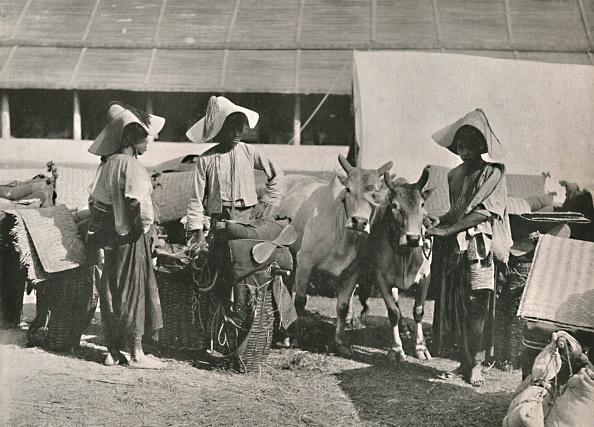 Ox Cart「Caravan Scene With Shans At Bhamo」:写真・画像(7)[壁紙.com]