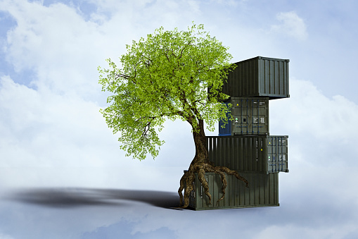 Storage Compartment「Tree growing roots on stack of cargo containers」:スマホ壁紙(1)