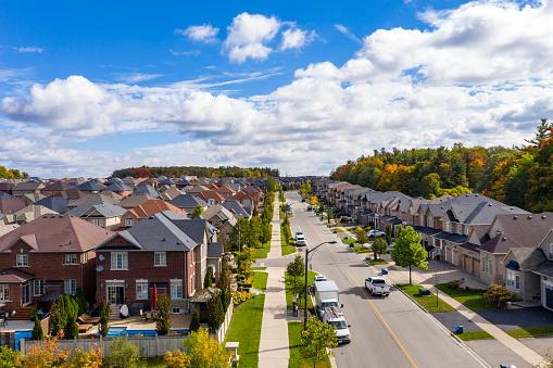 かえでの葉「カナダのオンタリオ州ヴォーンのウッドブリッジにあるヴェロールビレッジコミュニティロードの両側に色が残ります」:スマホ壁紙(10)