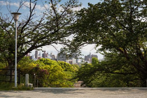 公園「Nishi Koen from Terumo」:スマホ壁紙(7)