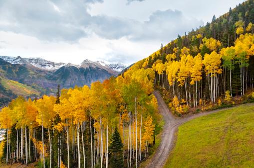 Aspen Tree「Telluride Colorado in Autumn」:スマホ壁紙(7)