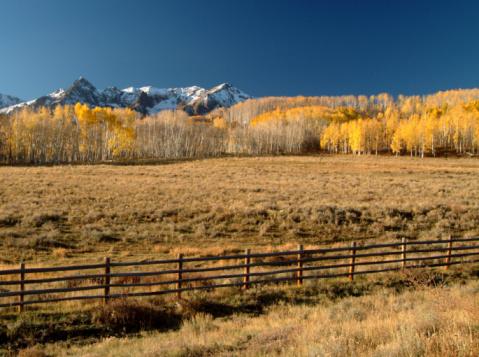 Grove「Telluride, Colorado」:スマホ壁紙(7)